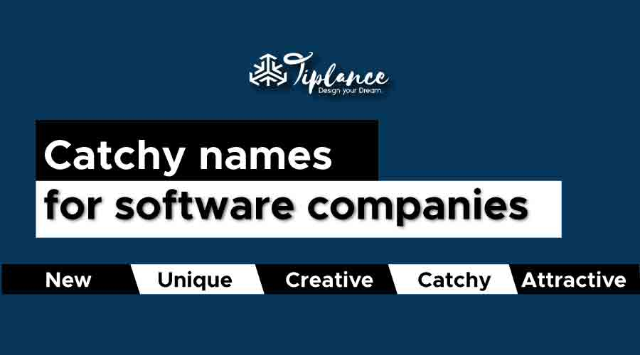 Catchy names for software companies