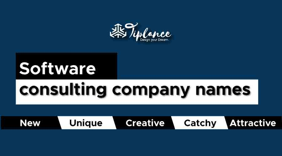 software consulting company names