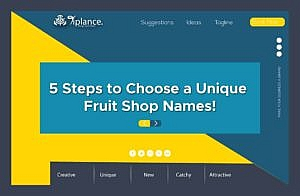 Step to Create Fruit Company name
