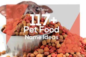 Pet Food Name Ideas
